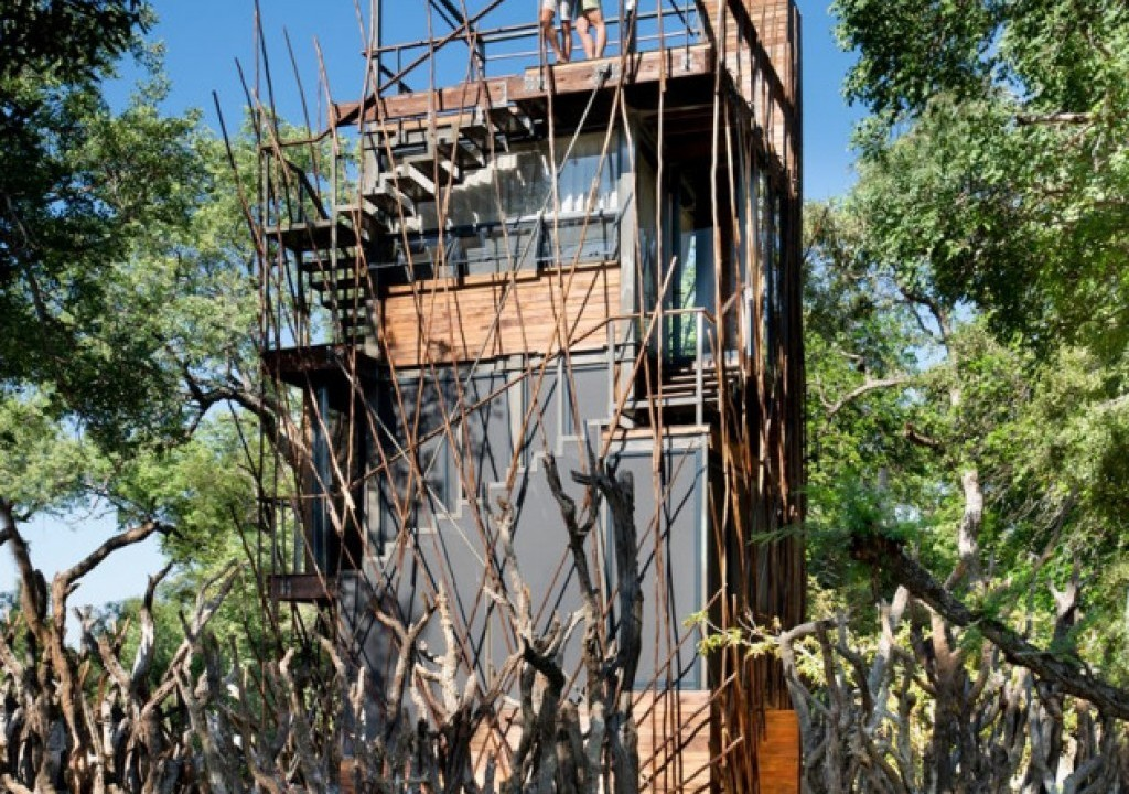 Imagem da notícia: - A experiência única de dormir numa casa na árvore em plena natureza sul-africana