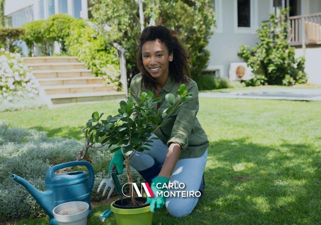 Imagem da notícia: - Como tornar o seu jardim mais apelativo antes de vender a sua casa