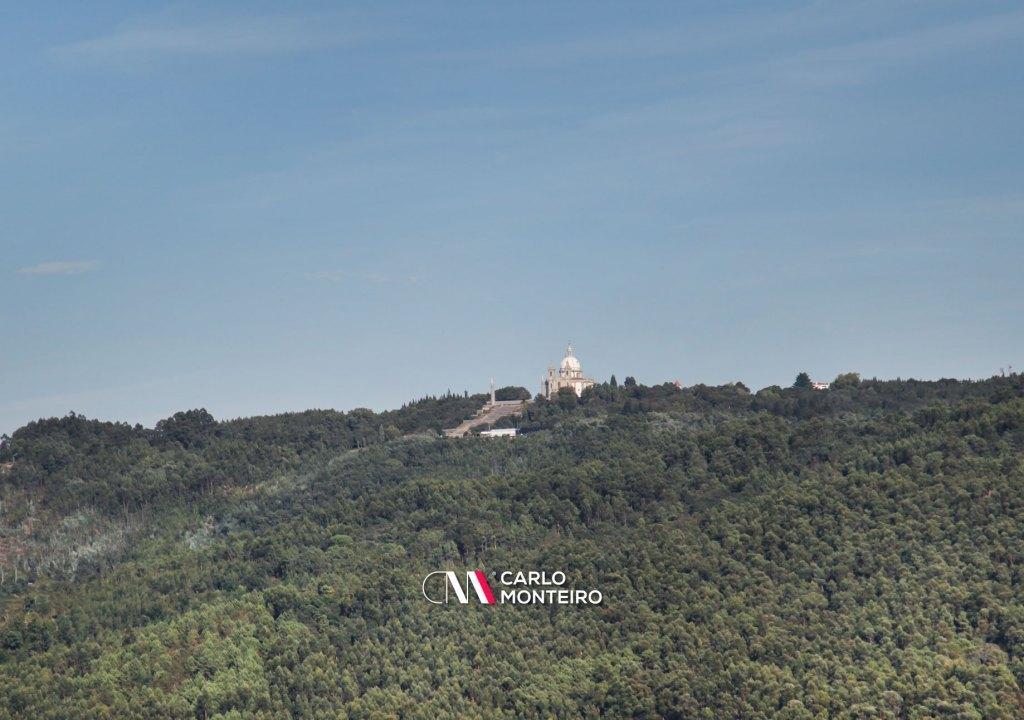 Imagem da notícia: - Os melhores trilhos para respirar ar puro em Braga